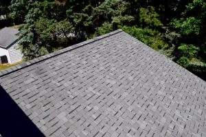 Dennison Exterior Solutions & Gutter Topper:CertainTeed Independence Georgetown Gray Shingles