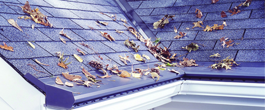 gutter topper with leaves